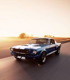 Shelby Gt350 1965 - car photography