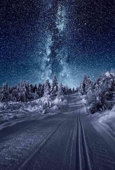 Amazingly clear winter night in Norway Fast Crazy Nature Deals. Winter Photography, Landscape Photography, Travel Photography, Night Photography, Photography Ideas, Landscape Pics, Photography Aesthetic, Photography Accessories, Photography Magazine