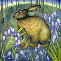 'Bluebell Hare' ~ by Kate Green