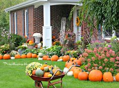 Priscillas: Pumpkin Picking 2014 and The Fall Porch