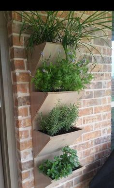 Your place to buy and sell all things handmade - Wall Planter Box Herb Garden Planter 4 Tier Vertical Large Planter Boxes, Vertical Garden Planters, Herb Garden Planter, Tiered Planter, Vertical Garden Design, Large Planters, Diy Garden, Garden Boxes, Vertical Gardens