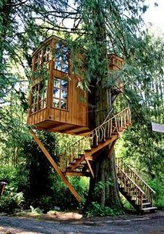 동화 책을 읽다보면 주인공들의 은신처가 되기도 했던 나무 위의 집은 어릴적 부터 내 꿈이었다. 나무 위해 나만의 작은 공간을 만들고 그 위에서 아래를 내려다 보면 정말 근사할 것 같다.