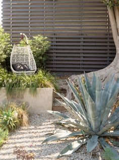An Egg swing from Patricia Urquiola's Maia collection for Kettal sits in the garden.