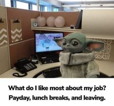 Funny Logic, Yoda Funny, Memes Funny Faces, Work Memes, Work Humor, Work Funnies, Yoda Quotes, Funny Women Quotes, Funny Sayings