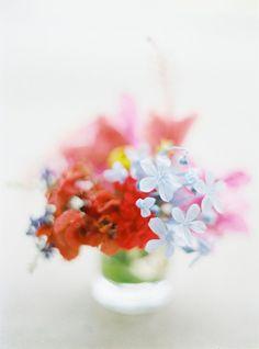 "mcsgsym: "" Aunties' Garden Flowers (via A Jacona) """