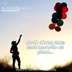 NOTĂ CĂTRE SINE: lasă lucrurile să plece... #heartfulness   #cunoaste_cu_inima   #hfnro Heartfulness Romania - Google+