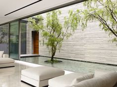 Gallery of 66MRN-House / ONG&ONG Pte Ltd - 22