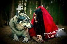 Il lupo buono