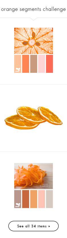 """orange segments challenge"" by jennifer ❤ liked on Polyvore featuring design seeds, colors, palettes, color palettes, backgrounds, fruit, food, food and drink, orange and fillers"