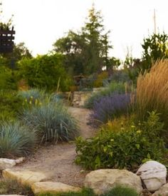 Winery Residents - mediterranean - landscape - san luis obispo - by Jeffrey Gordon Smith Landscape Architecture