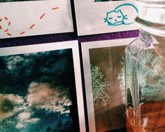 Photo by thatgirlfrombrave | VSCO | Denton