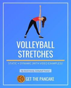 Static and Dynamic Stretches with Video Examples | Volleyball Stretching Ideas