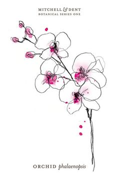 the orchid small print | MITCHELL & DENT