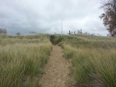 The path leading away from the dunes at Port Crescent State Park.