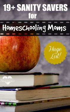 19+ Sanity Saving Tips For Home-school Moms.