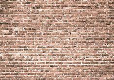 Flesh-colored brick backdrop for photo studio-cheap vinyl backdrop fabric background photography Picture Backdrops, Vinyl Photo Backdrops, Wall Backdrops, Fabric Photography, Background For Photography, Photography Backdrops, Photography Tips, Floor Texture, Brick Texture