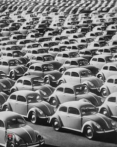 Vw Beetles, Volkswagen, Pictures, Delivery, Cars, Photos, Vw Bugs, Autos, Car
