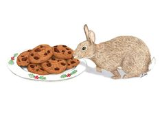 Cinnamon Bunny is a magical friend of Santa's: she is his traveling companion and helps eat his snacks on Christmas Eve!