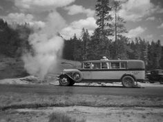 """New"" 14-passenger buses in Yellowstone, 1931. Yellow with retractable canvas on the top so tourists could stand if they wanted to see better."