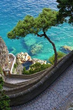 Beautiful street of Capri !! #Capri #travel #italy #beautiful #street