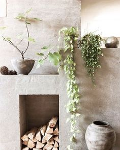 52 отметок «Нравится», 1 комментариев — @afternoonswim в Instagram: «dream space  - - #interiors #decor #inspiration #interiorinspiration #interiorinspo #plants…»