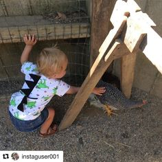Petting a chicken is so brave! Truly Dino-mite! . . . #mitzaccessories #toddlerclothing #toddlerfashion #toddlerstyle #dinomite #dinosaur #dinosaurs #dino #dinosaurclothes #kidsstyle #kidsfashion #kidsclothes #kidsclothing #kidswear #instalove #instadaily #instafashion #instacool