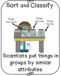 Science Inquiry Skills Poem   Science, Poem and Science inquiry