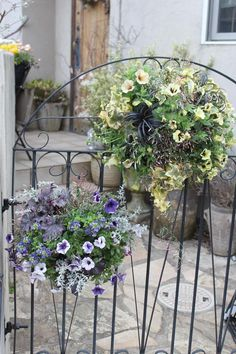 Flower Pots, Flowers, Natural Lifestyle, Eco Friendly House, Organic Gardening, Container Gardening, Green, Nature, Plants