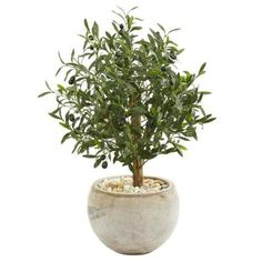 Indoor 31-In. Olive Artificial Tree in Bowl Planter