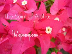 Ho'oponopono is a prayer of forgiveness that leads to renewed strength, energy and happiness. It helps make things right and gives you a sense of peace. Mindfulness Activities, Mindfulness Practice, Importance Of Prayer, Happiness Blog, Activities For Adults, Meditation Techniques, Power Of Prayer, Inner Peace, Healthy Habits