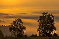 Fotostrecken - Wetter Bilder und Fotos - WetterOnlineSobald die Sonne aufgeht, wird aber schnell klar, dass noch Sommer ist. Die kräftigen Sonnenstrahlen lassen dem Nebel keine Chance. Bildquelle: Christoph Weber