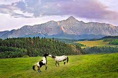 View to the South from Last Dollar Road near #Telluride #Colorado #HotelMadelineTelluride #WilsonPeak