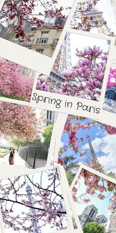 Spring in Paris, France: a few reasons why you should really consider visiting at this time of the year!