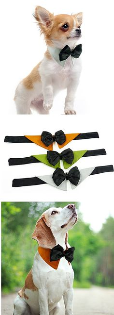Dog Tie White / Green / Orange Winter / Summer / Spring/Fall Wedding, Dog…