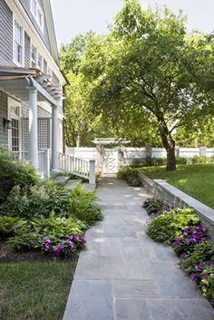 Stone walkway lined with small bushes | Sally Steponkus