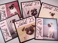 I like how the format of these table numbers with pictures of the pups!