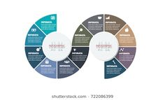 Vector timeline infographics set. Element infographic, template for diagram, graph, presentation and chart. Business concept with options, parts, steps or processes. Abstract background.