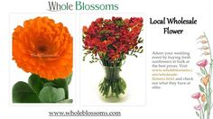 Adorn your wedding event by buying fresh sunflowers in bulk at the best prices. Visit http://www.wholeblossoms.com/wholesale-flowers.html and check out what they have at offer.