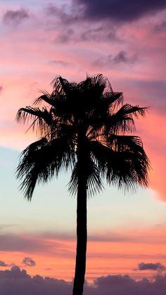 Pin by hamza bashir on hamza in 2019 screen wallpaper, summer wallpaper, tu Summer Wallpaper, Tree Wallpaper, Beautiful Sky, Beautiful Landscapes, Cellphone Wallpaper, Iphone Wallpaper, Iphone Backgrounds, Pinterest Instagram, Cute Wallpapers