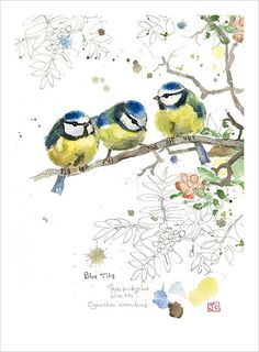 My Owl Barn: Bug Art Greeting Cards by Jane Crowther