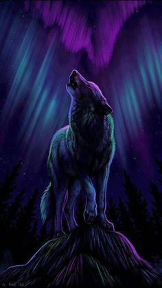 Moon Wolf Background Picture is the simple gallery website for all best pictures wallpaper desktop. Wait, not onlyMoon Wolf Background Picture you can meet more wallpapers in with high-definition contents. Wolf Images, Wolf Photos, Wolf Pictures, Wolf Wallpaper, Animal Wallpaper, Cute Cartoon Animals, Cute Animals, Wolf Background, Anime Wolf Drawing