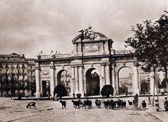Lo que de verdad me gusta: FOTOS ANTIGUAS8- Puerta de Alcalá en 1895 paso de ganado