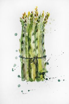 Original Watercolor Painting, Asparagus Organic art, Vegetables art, asparagus delicious at, Kitchen decor, watercolor asparagus Art OOAK by MaryArtStudio on Etsy