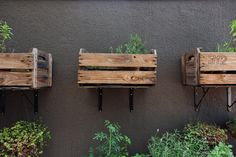 Área externa tem horta caseira feita dentro de caixotees de feira e sustentada por mãos francesas.