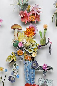 3d collages from cut-out images of flowers and dried natural debris by Anne ten Donkelaar