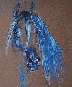 #Caballo árabe #horses #fem