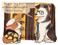 Kingsdog : The Fluffy Service