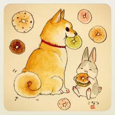 柴犬見てると突然ベーグルが食べたくなるのはなぜだろう
