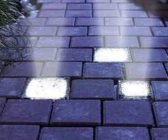 Create a magical nighttime environment by lighting your pathway using these solar powered light up bricks. These bricks are designed to stand up to adverse weather conditions and provide an excellent source of alternative lighting that won't drive up the electric bill.