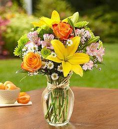 Mother's Day Flowers 1800Flowers - Fields of Europe - Small 1-800-Flowers,http://www.amazon.com/dp/B0037BOK3C/ref=cm_sw_r_pi_dp_XH-ztb1GW0W6QVCF